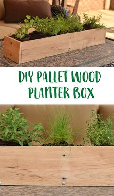 Use pallet wood to create this simple and easy DIY box that can be used for herbs, flowers, or a centerpiece. Includes tu… - All About Gardens Diy Wood Planter Box, Wood Pallet Planters, Diy Planters, Planter Boxes, Garden Planters, Wood Pallets, Pallet Wood, Diy Pergola, Pallet Pergola