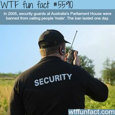 """Australia's Parliament House banned security guards from saying """"mate"""" - (Pretty Sure the """"substitute word"""" is the cause for the BAN lasting ONLY ONE Day!)  ~WTF awesome fun facts"""