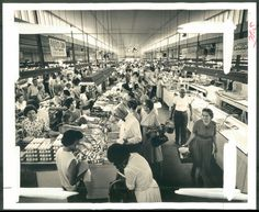 Eastern Market- looks the same in 2013 except the clothes and hairstyles ! Located on Memory Lane north of Market St in East York. Walgreens Photo Coupon, York Pennsylvania, York Pa, Political Issues, Gettysburg, Lancaster, Postcards, Dolores Park, Nostalgia