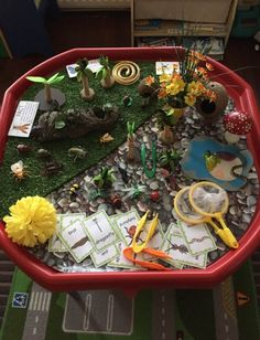 Bug hunt tuff tray Bug Activities, Nursery Activities, Rainforest Insects, Nursery Practitioner, School Projects, Projects To Try, Activity Based Learning, Bug Hunt, Tuff Spot