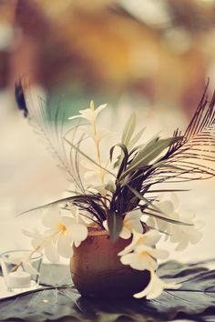 Tropical Coconut Wedding Centrepiece Great Gatsby Destination Fiji Wedding - Tamiz Photography