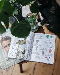 Current coffee table situation: Bullet Journal, Magazine & Cat. #bulletjournal #habittracker #bulletjournalsetup