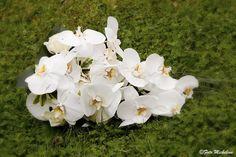 Bouquet 016