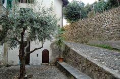 Vallebona (IM), Via Caruta