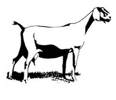 Boer Goat Clip Art | do NOT have to own goats or have ANY ...