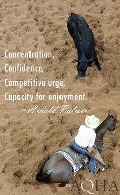 Don't forget to check out the AQHA Facebook page! https://www.facebook.com/aqha1?ref=hl