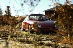 Classic #Porsche sunbathing in the weeds
