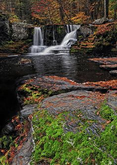 ✮ Waterfall - Childs State Park, PA