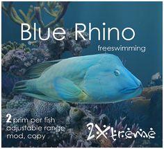 blue rhino by :: 2Xtreme ::