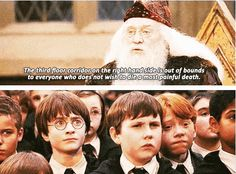 "That time his face was all ""THE FUCK KIND OF SCHOOL IS THIS?!?"" 
