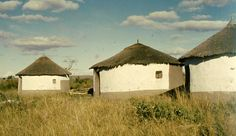 Vernacular architecture in South Africa     A group of cone-on-cylinder huts.    These huts were originally built with wattle and daub walls and locally-sourced thatch. They had a central pole holding up the roof. They were almost entirely built by the women and had dung-hardened floors which could be polished to a fairly high sheen.