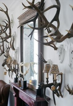 antlers   My French Country Home, French Living - Sharon Santoni