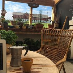 Starting the day working from home. In the greenhouse.