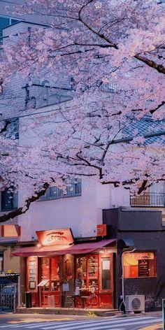 Anime Scenery Wallpaper, Aesthetic Pastel Wallpaper, Aesthetic Backgrounds, Wallpaper Backgrounds, Aesthetic Wallpapers, Aesthetic Japan, Japanese Aesthetic, City Aesthetic, Aesthetic Colors