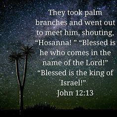 John 12:13