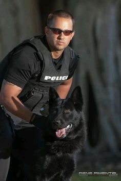 I need a set of these for myself. #German #Shepherd at work  all ears