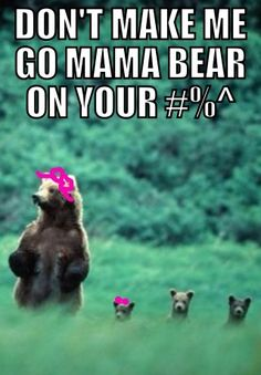 1000 Images About Mama Bear Foulker On Pinterest Bears