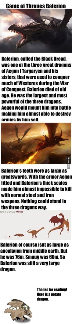 Does anybody else think a short movie or back story would be great on Balerion!