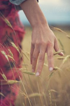 running your hands through the fields Country Life, Country Girls, Country Living, Foto Online, Photographie Portrait Inspiration, Hand Reference, Foto Art, Farm Life, Young Women