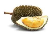 Doerian Bestaan er vruchten die naar vuilnisbakken stinken? Ja, en dan hebben we het over een doerian. In Zuidoost Azië zijn er verbodsborden voor het eten of meenemen van doerians in openbare gelegenheden of in het openbaar vervoer. De enorm stinkende vrucht ziet er van de buitenkant uit als een egel, met vele puntige stekels. het witte, romige zachte vruchtvlees smaakt heerlijk. Het doet denken aan banaan, vijg en vanille.