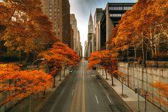 Autumn New York City #newyork, #NYC, #pinsland, https://apps.facebook.com/yangutu