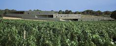 Terra Remota Winery / Untaller