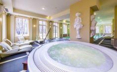 SPA w Pałacu Alexandrinum – miejsce Twojego relaksu Hotel Interiors, Hotel Spa, Tub, Outdoor Decor, Home Decor, Bathtubs, Decoration Home, Room Decor, Home Interior Design