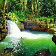 Breadnut Falls, St. Elizabeth Jamaica....a hidden gem!