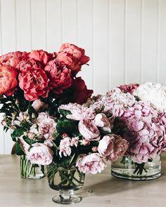 Peonies, hydrangea and garden roses