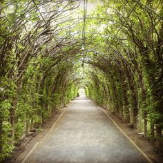 21 Instagram-Worthy Views Just Outside New York City #refinery29  http://www.refinery29.com/best-daytrips-near-nyc#slide6  Snug Harbor  Hop on the ferry and head to the northern coast of Staten Island. There, you'll find the Snug Harbor Cultural Center and Botanical Garden, a hidden escape for art aficionados; it's home to Art Lab, the Staten Island Arts, the Newhouse Center for Contemporary Art, the Noble Maritime Collection, and its own artist-residency program (SHARP). Comprised of 28 ...