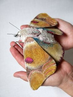 Fabric sculpture Large moth textile art by irohandbags on Etsy.   Wonderful!