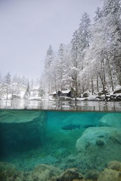 When I started my photography project 'The World from The Water' two years ago, Blausee was on my list of places to capture. I had seen photos of its teal blue waters fed underground by alpine springs, of the towering Swiss Alps that hovered in the background and the little wooden cabin on its shore. …