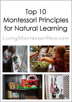 Top 10 Montessori Principles for Natural Learning Love this. I always hand this out to my new parents. It really helps them out!