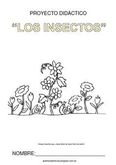 "AVENTURA DIMINUTA: PROYECTO DIDÁCTICO ""LOS INSECTOS"": OTRA MANERA DE CONOCER LA… Science For Kids, First Grade, Learning Activities, Homeschool, 1, Teacher, Education, How To Plan, Blog"