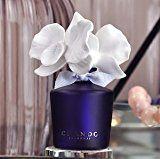 'CHANDO Myst Collection Mini Love Diffuser with 1.1-Oz. Purple, Wild OrchidFragrance' 1 Oz, Aromatherapy, Perfume Bottles, Diffusers, Love, Purple, Mini, Collection, Amor