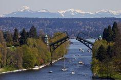 Montlake  cut with Freemont bridge raised for boat traffic