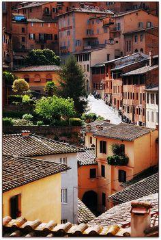 Sunny street in Siena, Tuscany, Italy