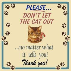 dont let the cat out tin sign Don't Let, Let It Be, Cat Signs, Metal Plaque, Ads, Website, Retro, Cover, Funny