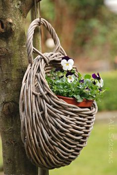I have a basket just like this, I have it hanging in my laundry room with dried flowers, just love it.