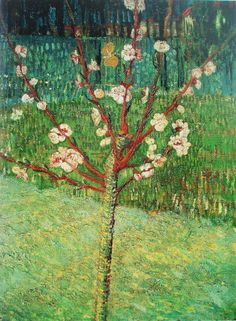 Vincent Van Gogh, almond tree in blossom, 1888