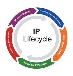 #Intellectual #Property #Lifecycle