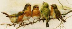 Free Vintage Image ~ John Winsch Birds New Year Postcard