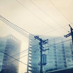 "Audifax 5"" x 5"" photograph - Urban Fog"