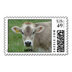 Sweet Jersey Cow Postage Stamp sold today!