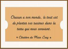 Citation de Marc Levy