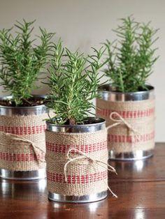 Tenha uma mini horta de temperos na cozinha!