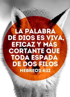 """""""La palabra de Dios es viva, eficaz y más cortante que toda espada de dos filos"""" - Hebreos 4:12 #bible #readandlive"""