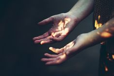 I lifted my hands into the golden splay of light, and felt my fingers warm as the sun kissed them.