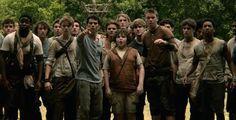 Laarders : Dit is de groep jongeren die in het labyrint leven. Sommigen zitten er al meer dan 2 jaar. En samen zoeken ze een uitgang van het labyrinth.