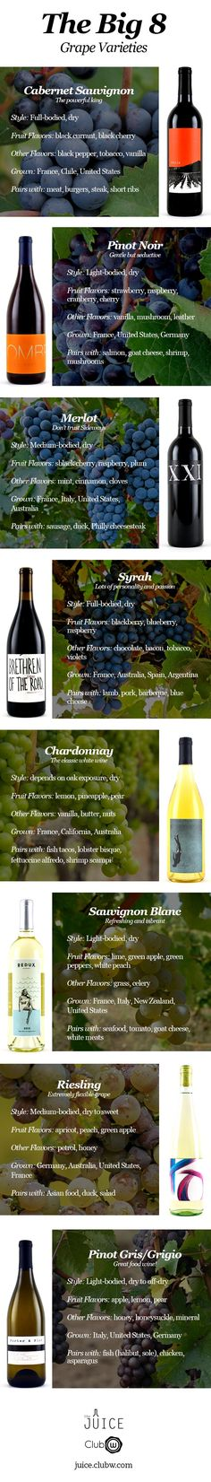 It is vital to know a little something about these 8 grape varieties - here's a guide to help!: